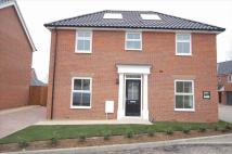 4 bed Detached home to rent in Dairy Drive, Beck Row...
