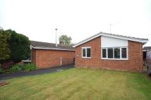 4 bed Detached Bungalow to rent in Curtis Drive, Feltwell...