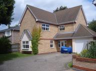 Detached home to rent in Carter Street, Fordham...