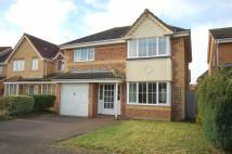 Detached house to rent in Falcon Way, Beck Row...