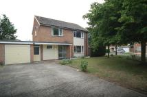 Detached house to rent in St Helena Walk...