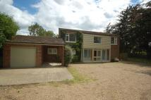 Detached home in Croxton Road, Thetford
