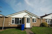 Bungalow to rent in Lamble Close, Beck Row...