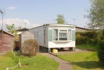 Bungalow for sale in The Saltings, Stafford