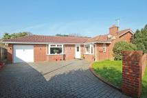 Bungalow for sale in Pipers Drive, Mudeford...