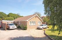 Detached Bungalow in Elmers Way, Bransgore...