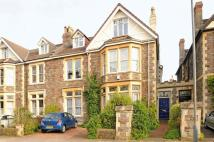 8 bed semi detached house in Blenheim Road, Redland