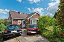 4 bed Bungalow in Norton Lane...