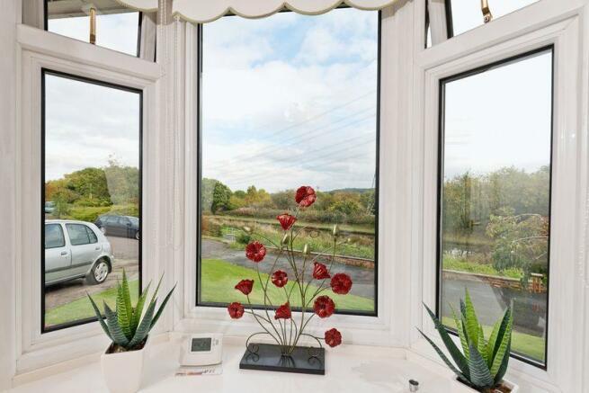 Window view