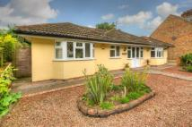 Bungalow for sale in Wilstead Road, Elstow...