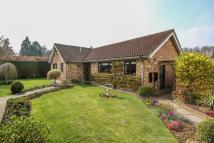 3 bed Bungalow for sale in Hatching Green Close...