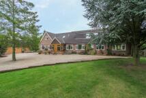 4 bedroom Equestrian Facility house in Kimpton Bottom...
