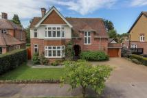 Detached house in Ludlow Avenue, Luton...