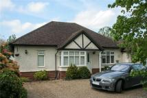Bungalow for sale in Roundwood Park...