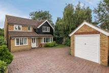 Detached home in Coltsfoot...