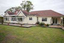 Detached Bungalow for sale in Sandy Lane, Aughton...
