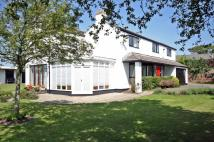5 bedroom Detached house in Shepherds Farm...