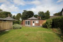 Detached Bungalow in Beech Lodge, Bold Lane...