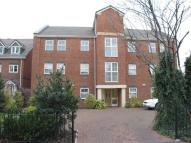 Mill Lane Flat to rent