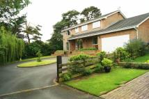 4 bed Detached property in Bieston Close, Wrexham
