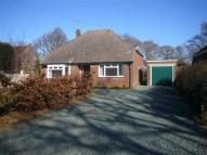 2 bed Bungalow in Anmore Road