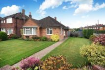 3 bed Detached Bungalow in Merryfield Drive, Horsham