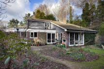 Detached house for sale in The Glade, Horsham