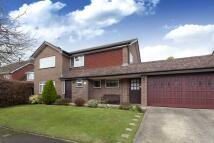 4 bedroom Detached house for sale in Grebe Crescent, Horsham