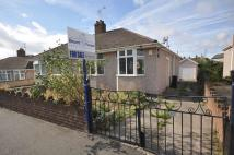 Lambrook Road Semi-Detached Bungalow for sale
