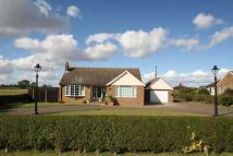 Detached Bungalow for sale in College Road, East Halton