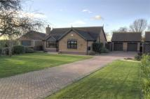Detached Bungalow for sale in Barrow Road, New Holland