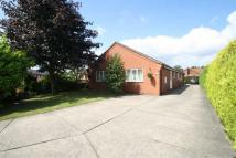 5 bed Detached Bungalow in Marsh Lane...