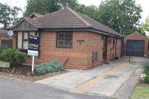 Detached Bungalow for sale in Palmer Lane...