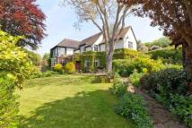 4 bed Detached property in Hove Park Gardens Hove...
