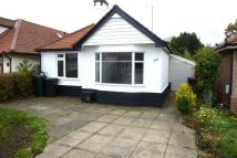 Bungalow for sale in Chilton Road, Ipswich...