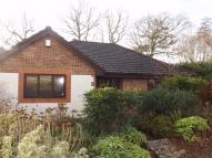 3 bed Detached Bungalow to rent in Fairfield Chase...