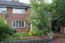 semi detached house in Blenheim Road...