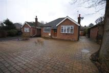 2 bed Detached Bungalow for sale in Aldersgate Road...
