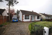 Detached Bungalow for sale in Conway Road...
