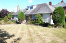Newton Drive Detached Bungalow for sale