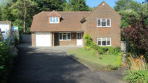 4 bed Detached house for sale in Cranedown, Lewes, BN7...