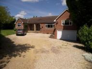 Birches Lane Detached Bungalow to rent
