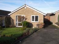 Detached Bungalow to rent in Hallfield Road, Newton...
