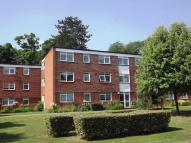 Flat for sale in Sollershott Hall...