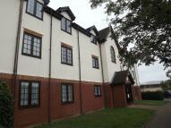Cromwell Road Studio flat to rent