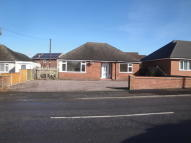 Shrewsbury Road Detached Bungalow to rent