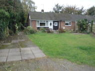 Semi-Detached Bungalow to rent in Salisbury Road...