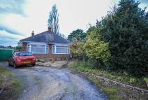 Detached Bungalow in Southill Avenue...