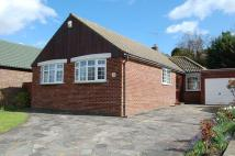 Detached Bungalow in Green Farm Close...