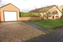 Detached Bungalow in Kingsway, Wisbech, PE13